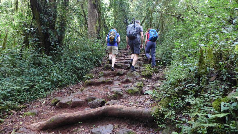 Marangu Trail